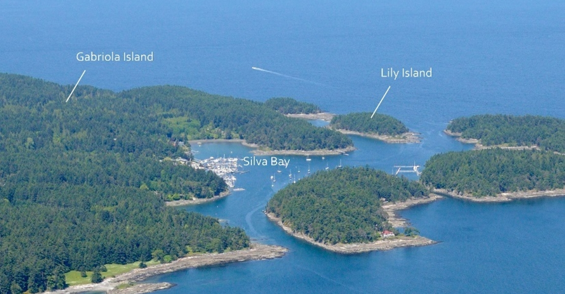 Lily Island